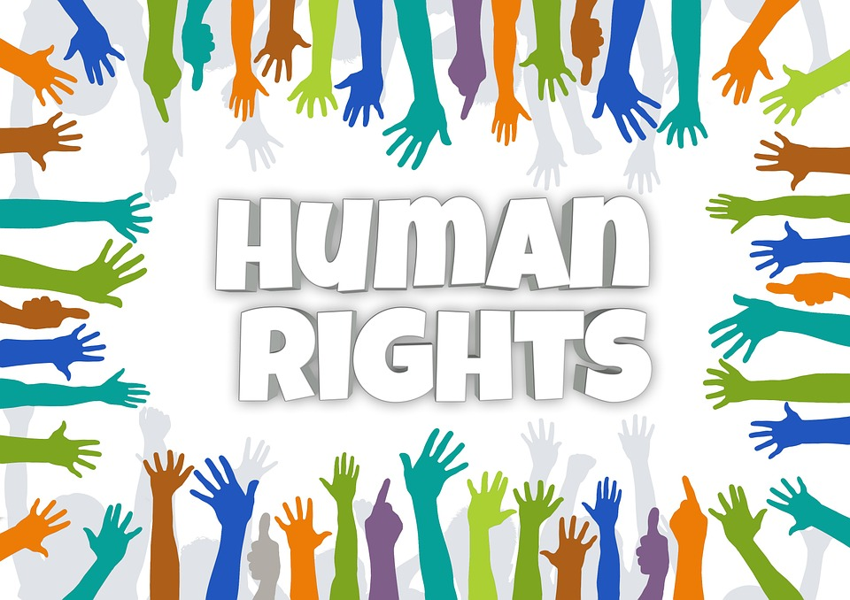 how to become member of international human rights canada